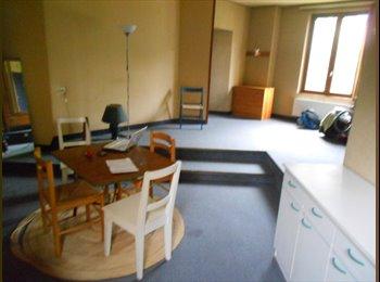 Appartager FR - studio dans maison - Notre-Dame, Grenoble - €450