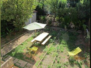 Montpellier facultés, chambre meublée avec jardin