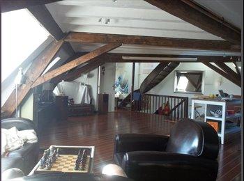 Strasbourg Centre 3 chambres meublées disponibles.