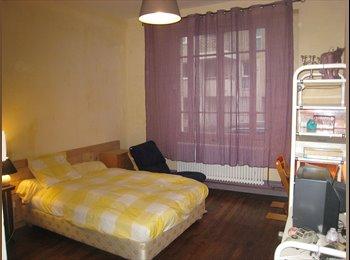 Appartager FR - Chambre meublée de 17m² avec accès indépendant - 8ème Arrondissement, Lyon - €370