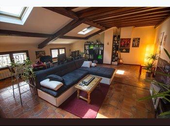 Appartager FR - 110m² à partager. De l'espace et du calme. - Fontaines-sur-Saône, Fontaines-sur-Saône - €450