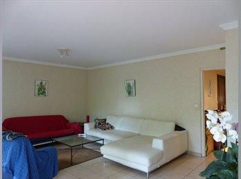 Appartager FR - Colocation Saxe Gambetta - 3ème Arrondissement, Lyon - €420
