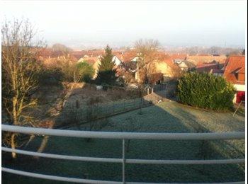 Appartager FR - Propose création d'une colocation à 2 dans appartement 3P à Furdenheim  - Furdenheim, Furdenheim - €373
