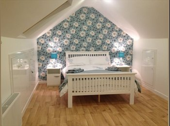 Newly Renovated Rooms Available in Artane