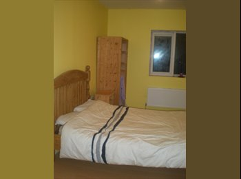 3 Rooms to Rent