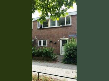EasyKamer NL - Te huur, kamer aan de Frederik v Blankenheimstraat - Deventer, Deventer - €300