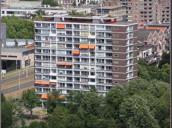 EasyKamer NL - Per direct 3 losse kamers aan Euromastpark - Nieuwe Werk, Rotterdam - €650
