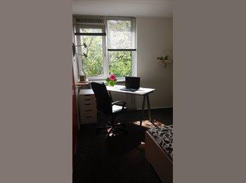 EasyKamer NL - ruimte voor gezellige rustige huisgenoot  - Delft, Delft - €485