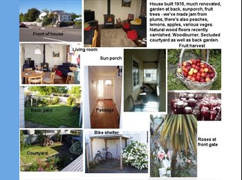NZ - Two prof F 25+ to join 2 friendly prof M flatmates - Takaro, Palmerston North - $100