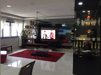 EasyRoommate SG - commen room available for rent in bishan st - Bishan, Singapore - $800