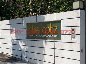 Apartment for Rent: Studio (388sqft) at The Cotz