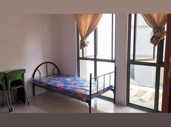 BigCommonRoom;Apartment; Payalebar; NoOwner;NoAgen