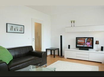 Clean and bright 1 bedroom apartment