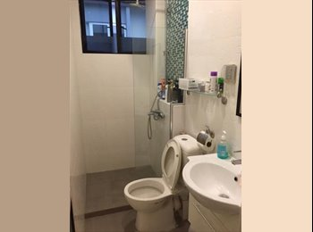 common room with own bath room for rent