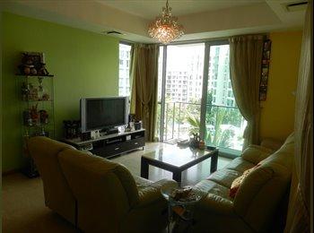 EasyRoommate SG - caribbean condominium common room for rent - Telok Blangah, Singapore - $1700