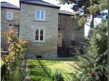 EasyRoommate UK - Double room in nice clean house - Ruabon, Wrexham - £350