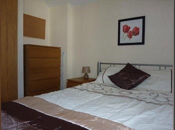 EasyRoommate UK - Beautiful Rooms in High Quality Home - Penylan, Cardiff - £410