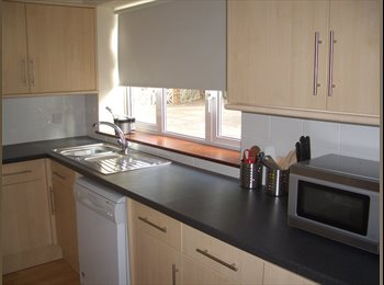 EasyRoommate UK - HOUSE SHARE ACCOMMODATION BRIGHTON - Brighton, Brighton and Hove - £505