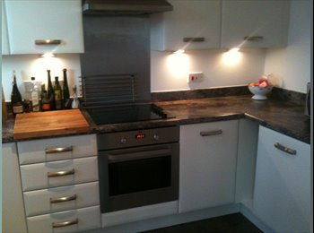 EasyRoommate UK - Central modern  Double room in  new build flat - Southampton, Southampton - £500