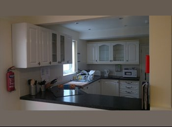 Beautiful light single & double room to rent