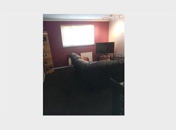 EasyRoommate UK - Double room to rent - Dallington, Northampton - £380