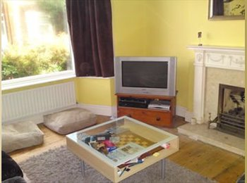 Double room in friendly shared house - Beeston