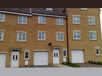 EasyRoommate UK - Quality Professional Houseshare Hampton Peterbor - Hampton, Peterborough - £400