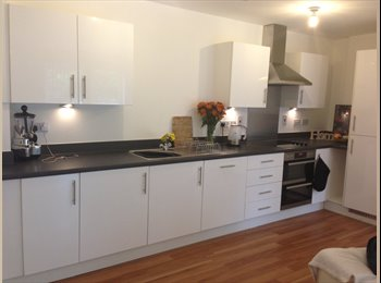2 Rooms in 1 Immaculate Apartment!!