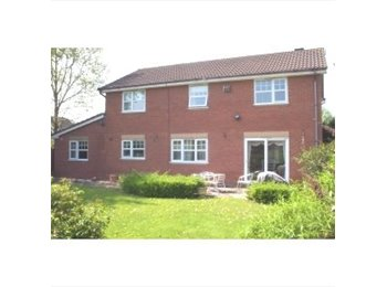 EasyRoommate UK - Double Bedroom in Friendly Houseshare - Worcester, Worcester - £325