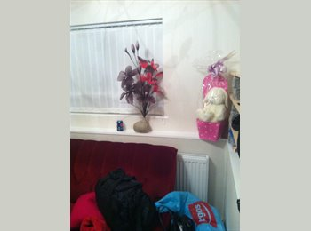 EasyRoommate UK - Stunning room for rent - Taunton, South Somerset - £320