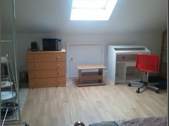 EasyRoommate UK - A large double room with ensuite bathroom and kitchnette available very close to university - Aberystwyth, Aberystwyth - £600