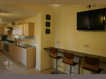 Large double room available in a great house