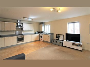 EasyRoommate UK - Decent Flat to share!!! - Wesham, Preston - £345