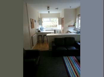 EasyRoommate UK - Spacious (student only) House last minute room! - Evington, Leicester - £248