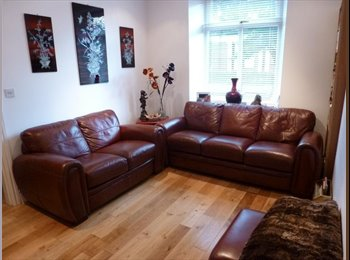 EasyRoommate UK - QUALITY ACCOMMODATION FOR PROFFESSIONALS - Prenton, Wirral - £380