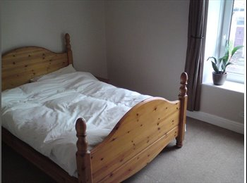 EasyRoommate UK - Half a house to rent - lots of space - Crookes, Sheffield - £375