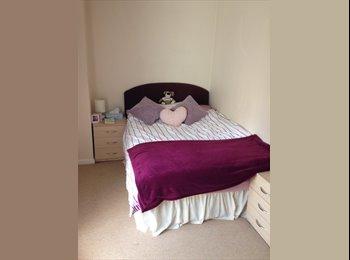 EasyRoommate UK - Double Bedroom in 4 bedroom flat - Newcastle - Newcastle City Centre, Newcastle upon Tyne - £362