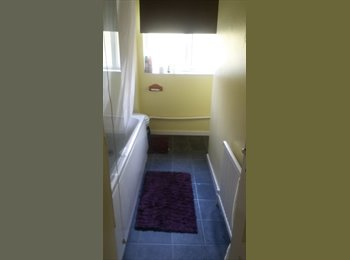 EasyRoommate UK - single room to rent 5-10mins to town - Old Town, Stevenage - £320