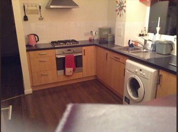 double room in Hampton available to professional
