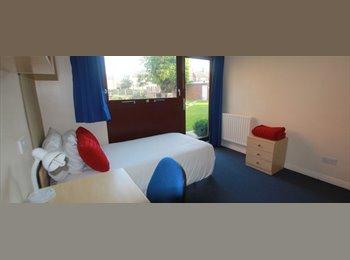 EasyRoommate UK - Good Value Student Accommodation - Loughborough, Loughborough - £240