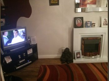 EasyRoommate UK - Feltham Single Room - Feltham, London - £375