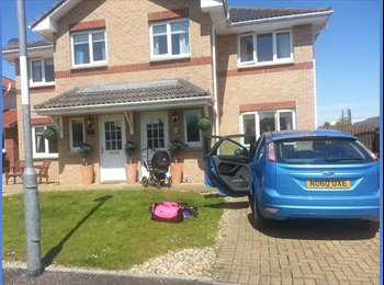 EasyRoommate UK - fab house room for professional - Mount Vernon, Glasgow - £500