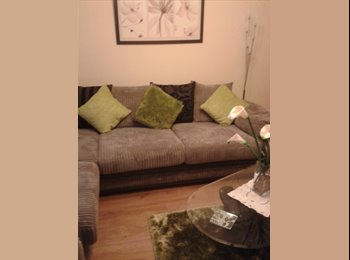 EasyRoommate UK - absolute bargain - St Budeaux, Plymouth - £440