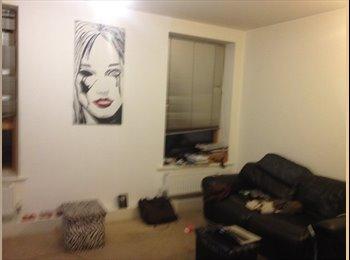 EasyRoommate UK - Short term room rent in South London - Stockwell, London - £600