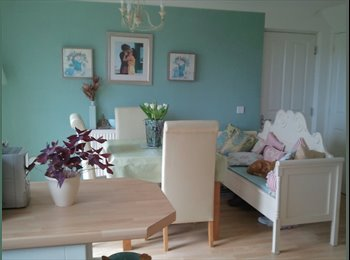 EasyRoommate UK - Fab SUNSETS from our modern detached home - Carmarthen, Carmarthen - £325