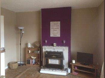 EasyRoommate UK - Large 3 bed flat  - Holt End, Redditch - £400