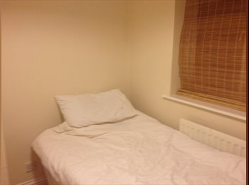 EasyRoommate UK - Single room  - Hinckley, Hinckley and Bosworth - £300