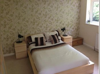 EasyRoommate UK - great size furnished double bedroom in clean house - Redditch, Redditch - £380