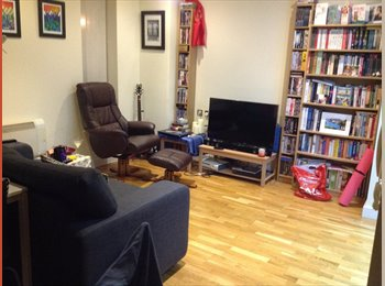Easy going flatmate wanted