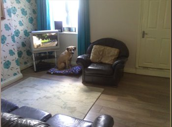 URGENTLY- Looking for House Share mate